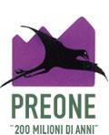 Preone, Logo del Museo.