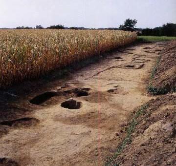 POZZUOLO DEL FRIULI (Ud), fraz. Sammardenchia, loc. Cueis. Villaggio neolitico.